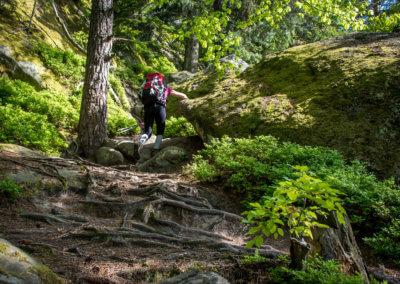 pulcinske-skaly-beskydy-taboriste-kemp-cestovani-dobrodruzstvi (2)