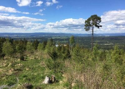 rozhovor-mikrodobrodruzstvi-erik-hess-mikrodobrodruzstvi-v-norsku (21 of 26)